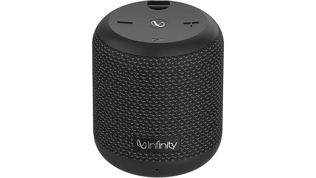 Infinity (JBL) Fuze 100 Waterproof Portable Speaker
